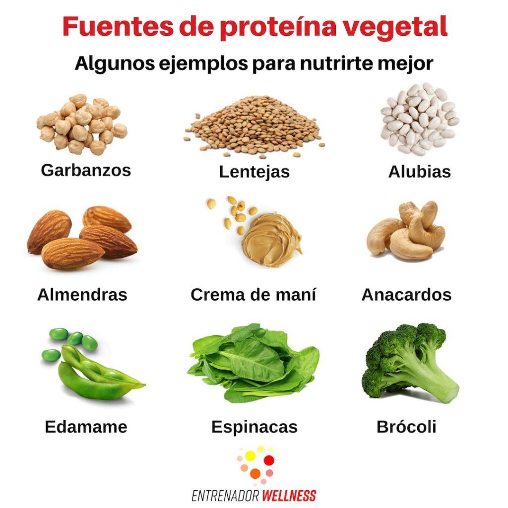 Alimentos sustentables