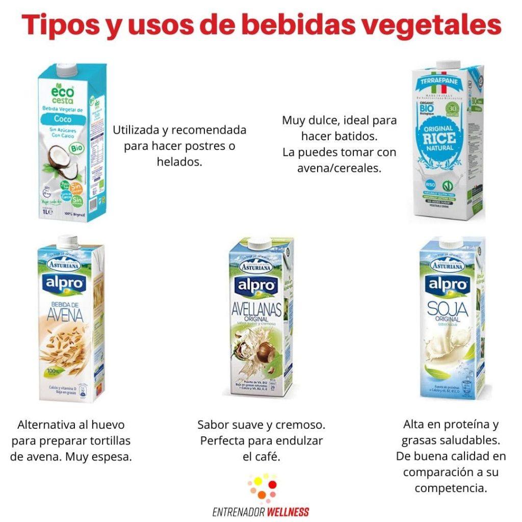 Diferentes alternativas a las bebidas vegetales que existen en el mercado 2020.