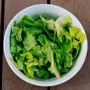 mini ensalada dieta cetogenica